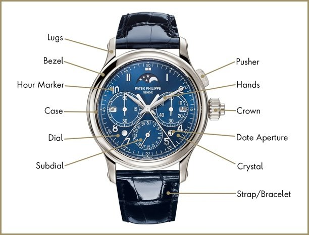 Annotated watch anatomy image